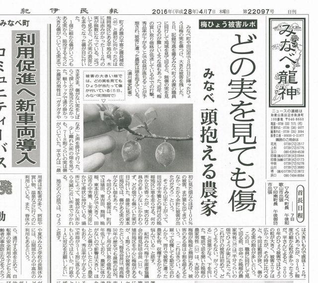 新聞記事ひょう被害2016.4.7